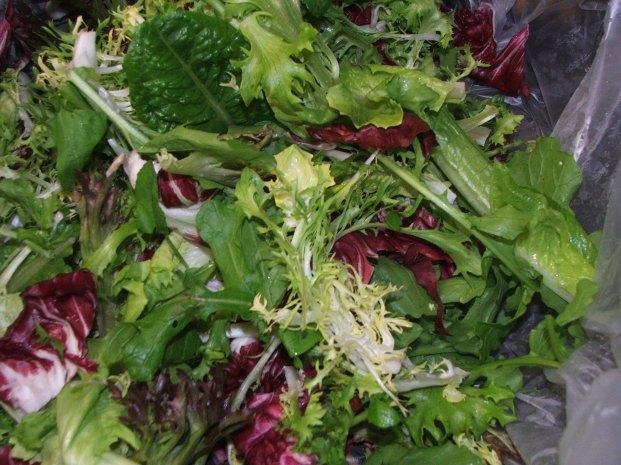 Bathgate Farm bitter green salad mix